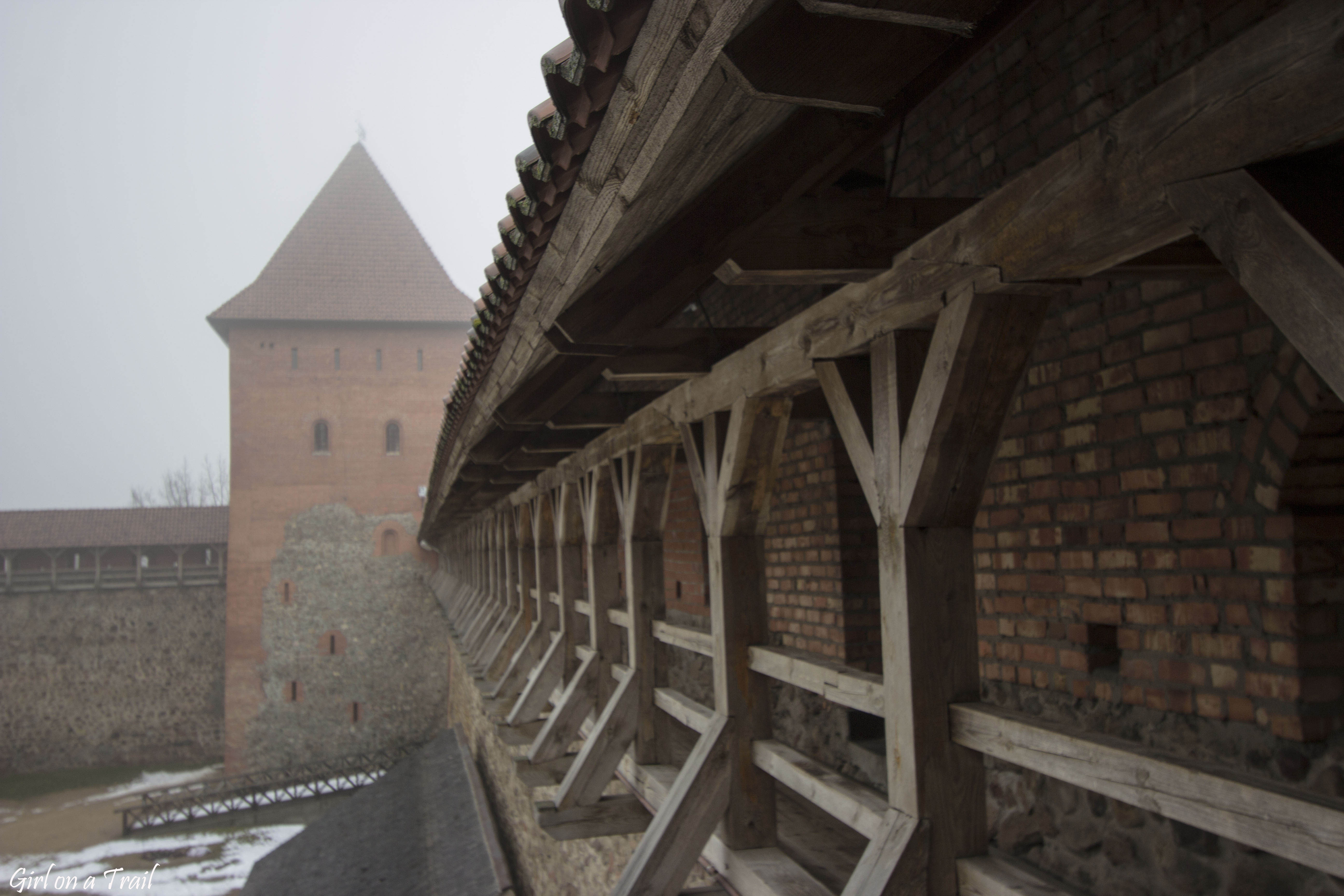Białoruś - Lida, Zamek