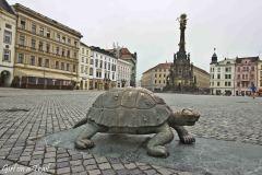 Czechy - Ołomuniec