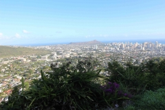 Hawaje - Diamond Head