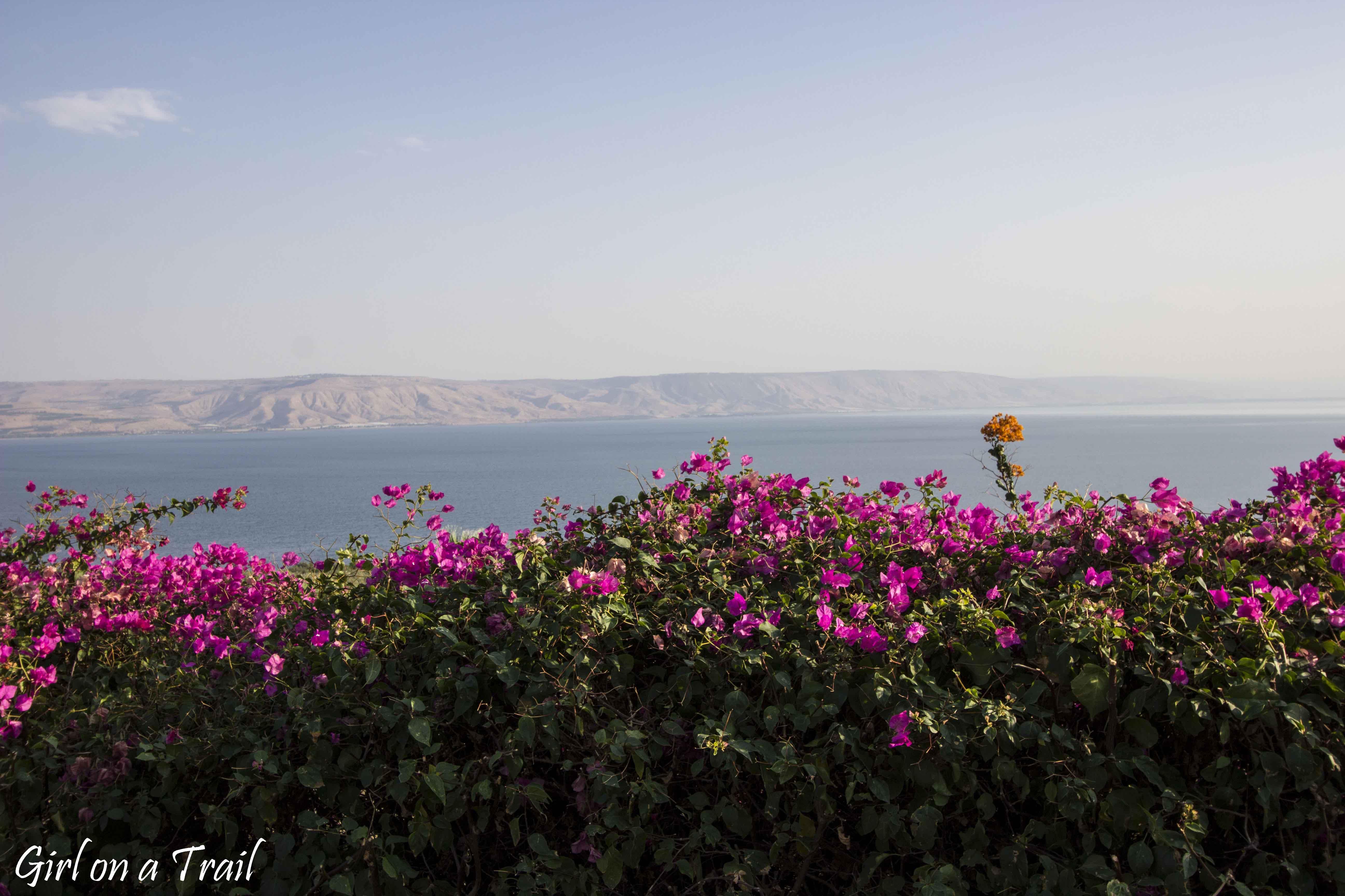 Jezioro Galilejskie - Góra Błogosławieństw